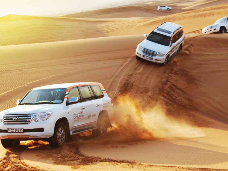 Liwa Safari full Day tour